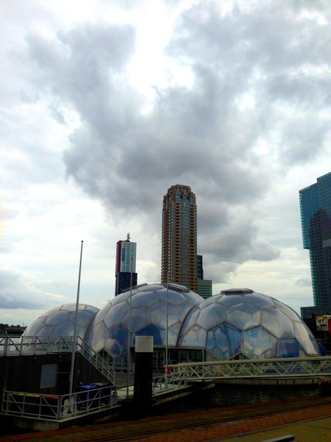 Rotterdam's Floating Pavilion